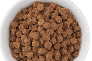 Determine portions of cat food for weight loss